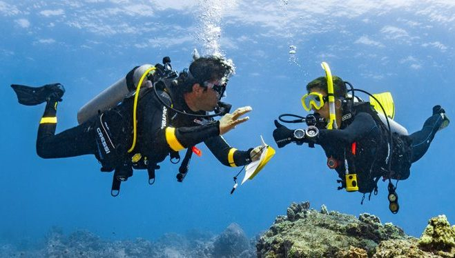 PADI Dive Theory (eLearning)
