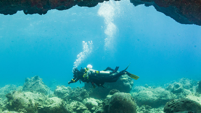 PADI Enriched Air Diver (eLearning)