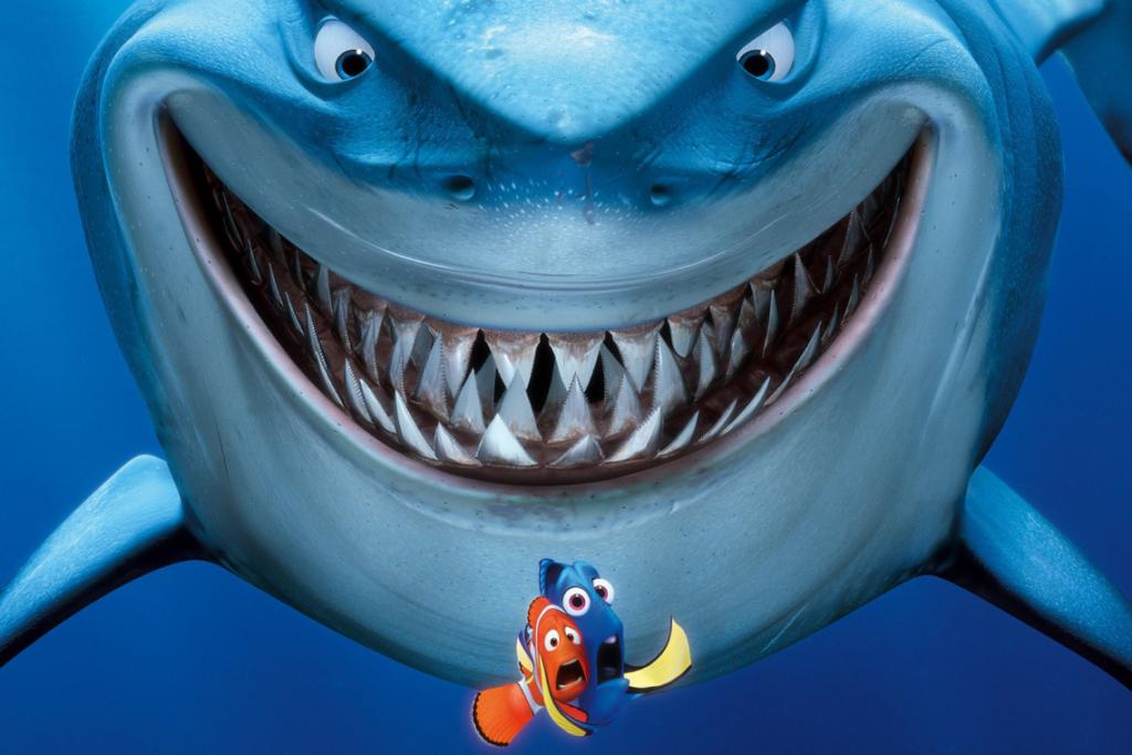 Shark Blog 1: Myth-busting Sharks